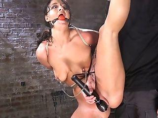 BDSM, Bondage, Cute, Hardcore, Hogtied, Rough,