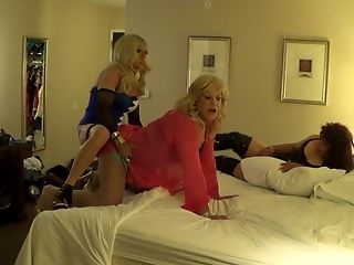 Amateur, Big Cock, Blowjob, Foursome, HD, Lingerie, Shemale Fucks Shemale,